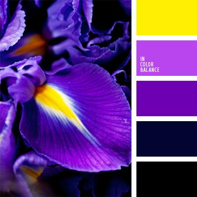 paleta-de-colores-539