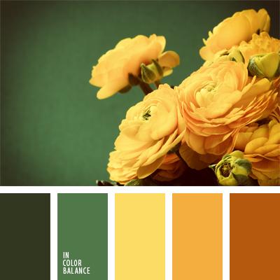 paleta-de-colores-553
