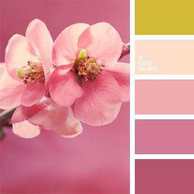 paleta-de-colores-557