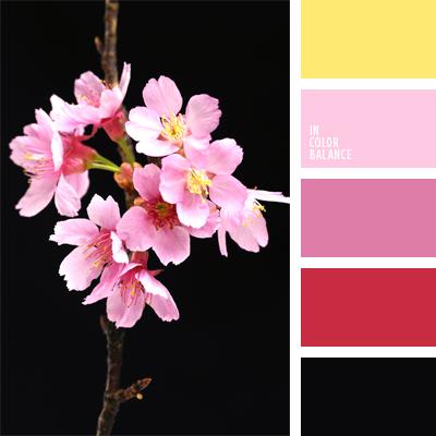 paleta-de-colores-566