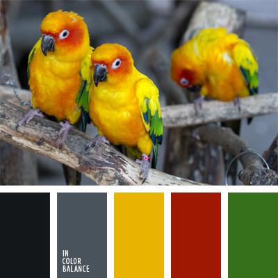 paleta-de-colores-568