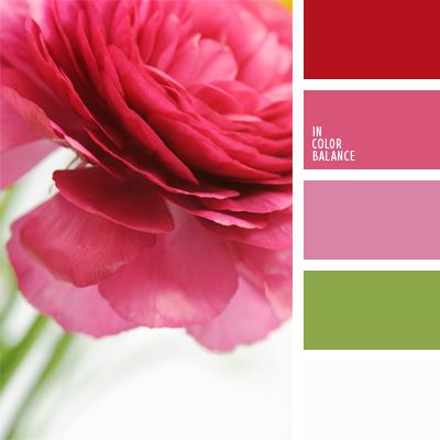 paleta-de-colores-569