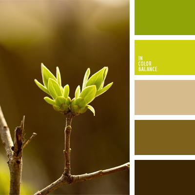 paleta-de-colores-570
