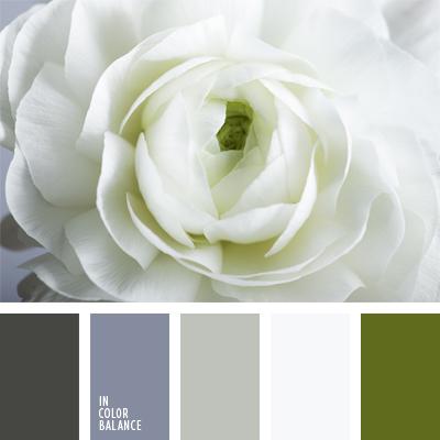 paleta-de-colores-572