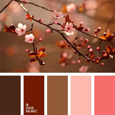 paleta-de-colores-574