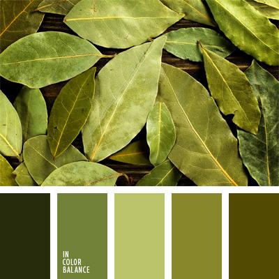 paleta-de-colores-575