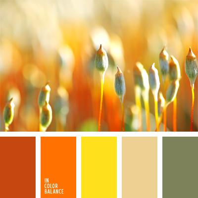 paleta-de-colores-578