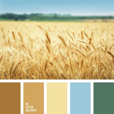 paleta-de-colores-583