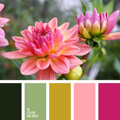 paleta-de-colores-584