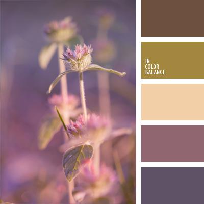 paleta-de-colores-585