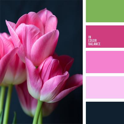 paleta-de-colores-597