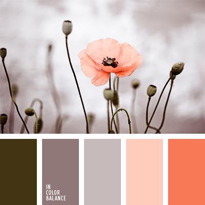 paleta-de-colores-598