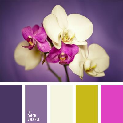 paleta-de-colores-608