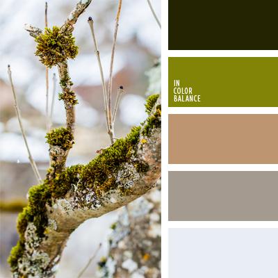 paleta-de-colores-615