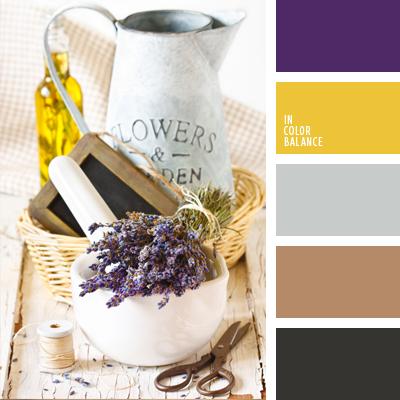 paleta-de-colores-620