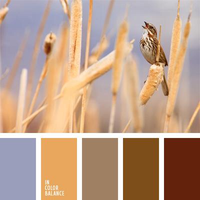 paleta-de-colores-623
