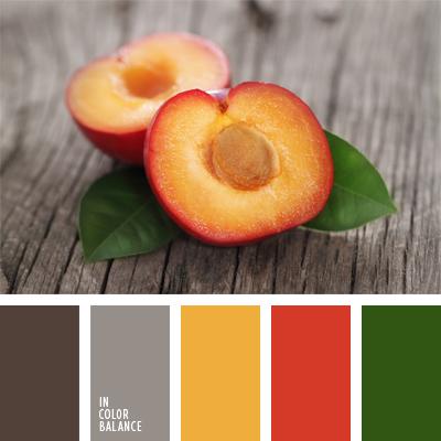paleta-de-colores-624