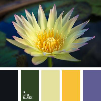 paleta-de-colores-626
