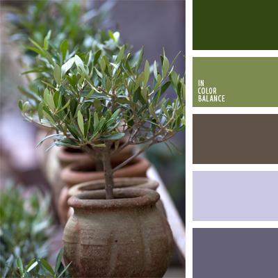 paleta-de-colores-629