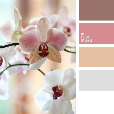 paleta-de-colores-635