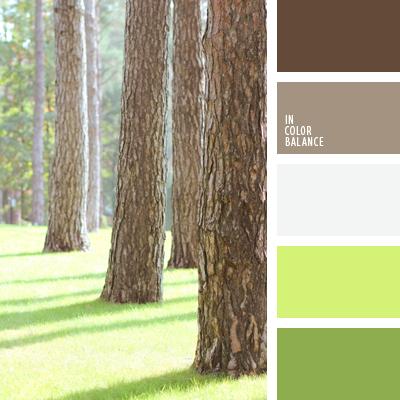 paleta-de-colores-639
