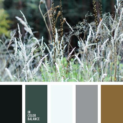 paleta-de-colores-640