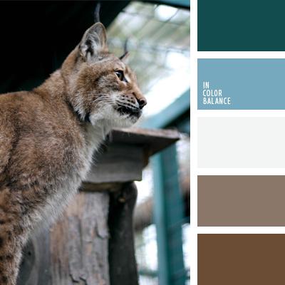 paleta-de-colores-642