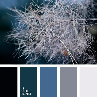 paleta-de-colores-643