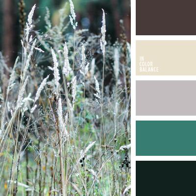 paleta-de-colores-646