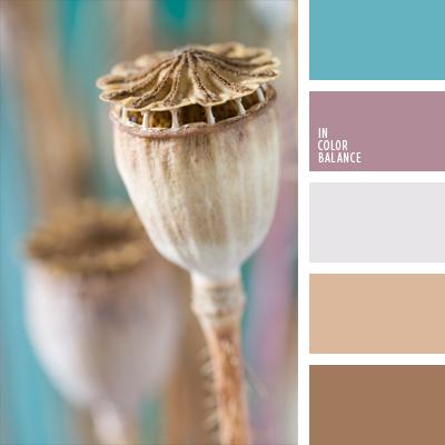 paleta-de-colores-648