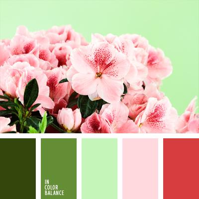 paleta-de-colores-653