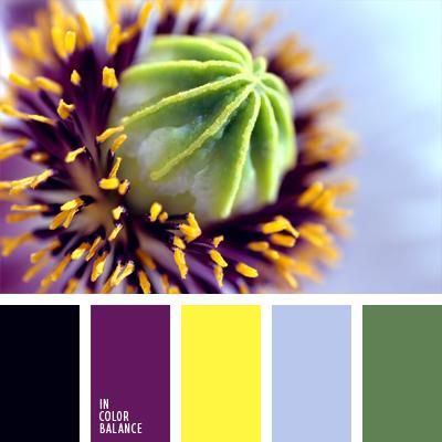 paleta-de-colores-660