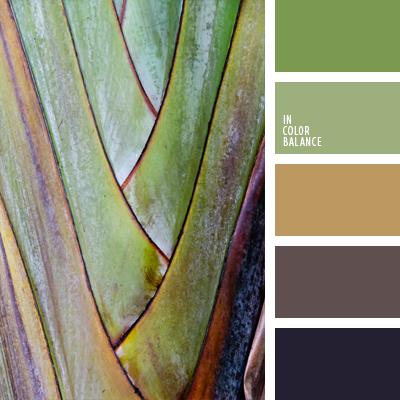 paleta-de-colores-662