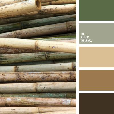 paleta-de-colores-663