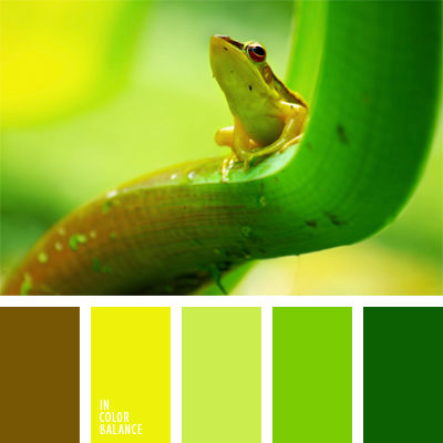 paleta-de-colores-664