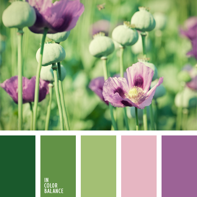paleta-de-colores-666