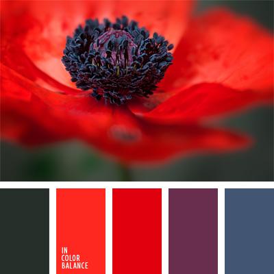 paleta-de-colores-668