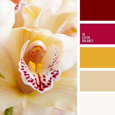 paleta-de-colores-687