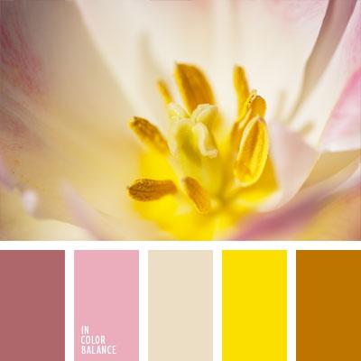 paleta-de-colores-690