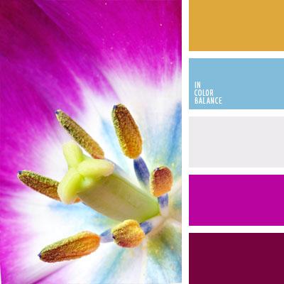 paleta-de-colores-692