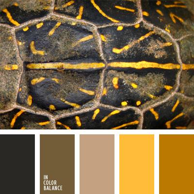 paleta-de-colores-693