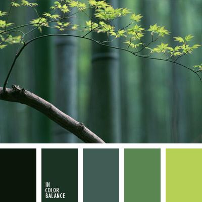 paleta-de-colores-696