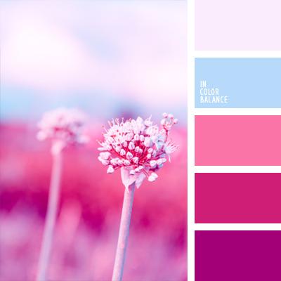 paleta-de-colores-702