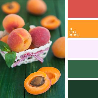 paleta-de-colores-703