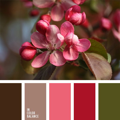 paleta-de-colores-705