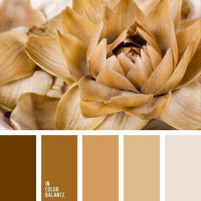 paleta-de-colores-712