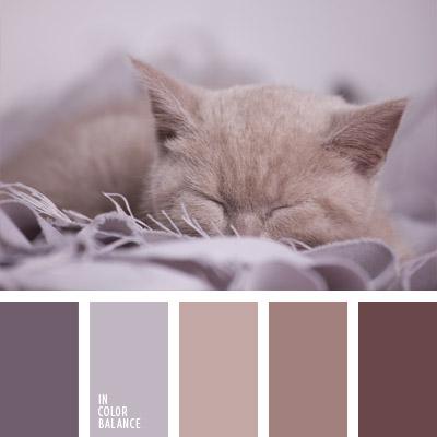 paleta-de-colores-716