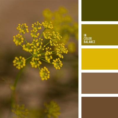 paleta-de-colores-722