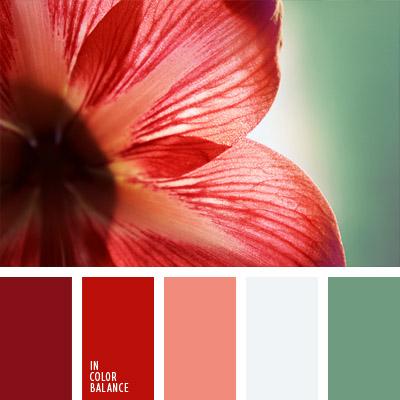 paleta-de-colores-734