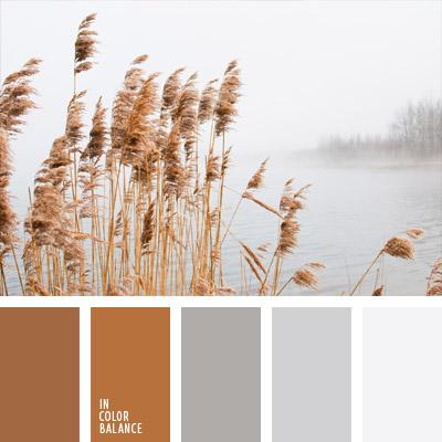 paleta-de-colores-735